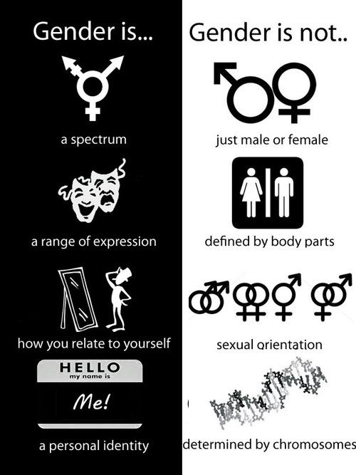 genderVsSex