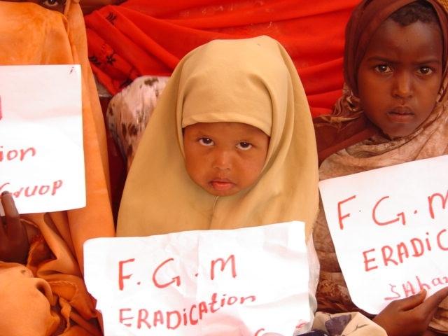 FGM(3)_1