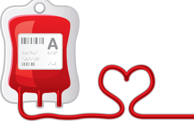 donor darah 3