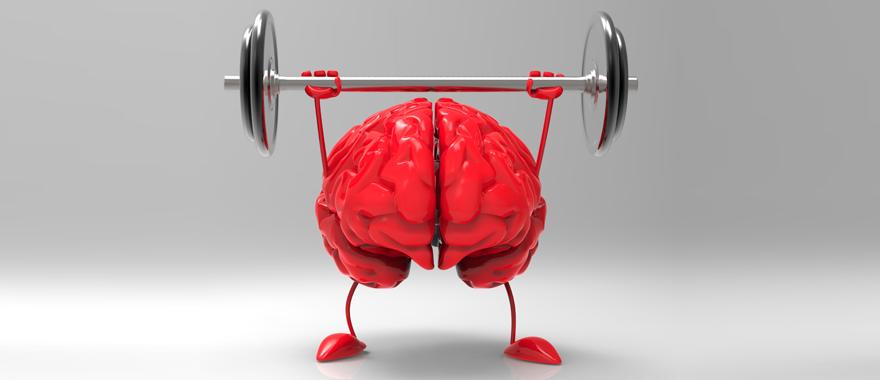 asah otak1